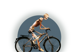 Bodies-Human-on-Bicycle